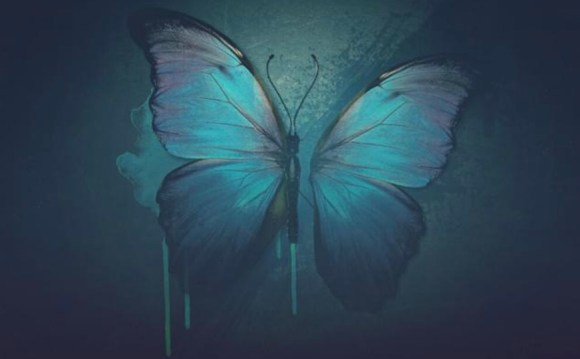 лептир без крила
