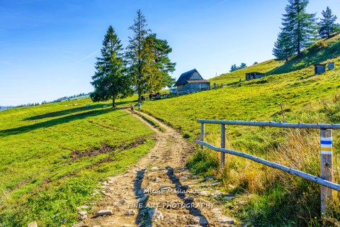 Road leading to wooden shephards hut in mountains, Pieniny, Poland