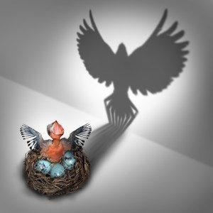 hatchling baby bird in a nest coming out with a cast shadow of a flying adult bird rising with large open wings