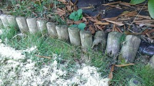 Okraje trávníku - palisáda