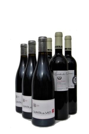 mägede punane vein
