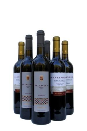kerge ja odav punane vein