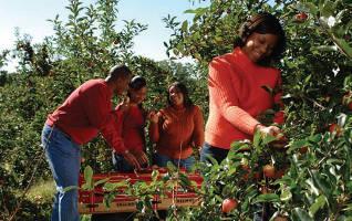 family-enjoying-fall-harvest-wisconsin