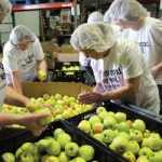 United Healthcare Volunteers and Feeding America Work Together