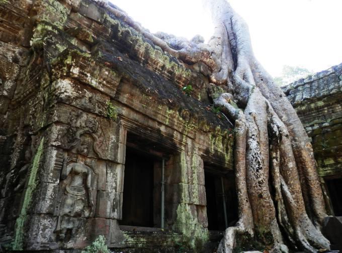 Ta Prohm Camboya