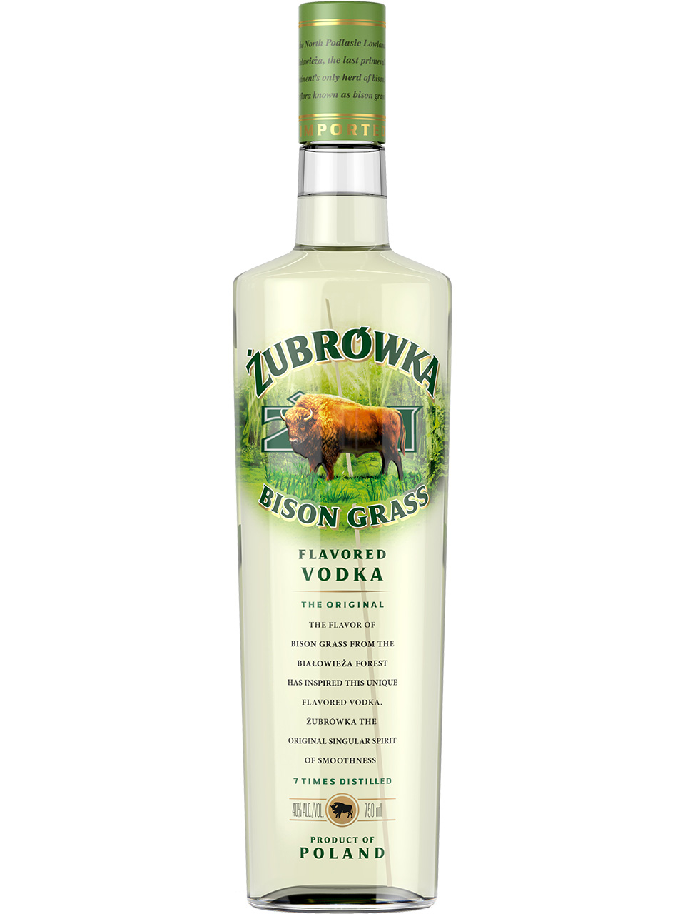bison grass