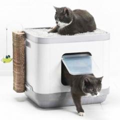 cuidados gatos deposiciones