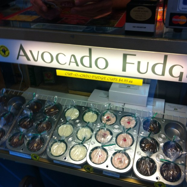 Selection of avocado fudge