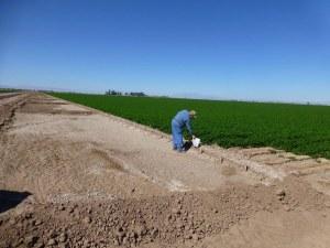 IrrigationDitchAlKalin