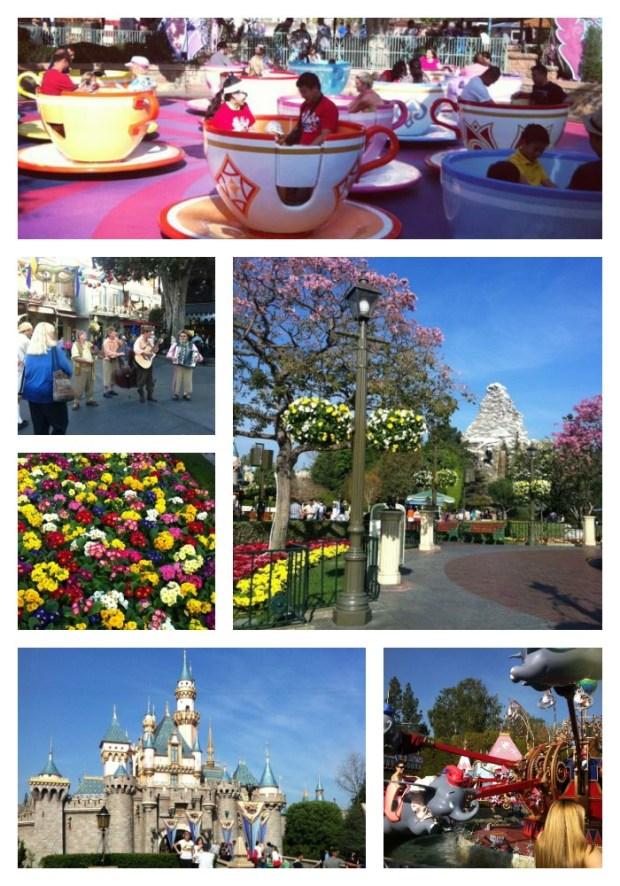 Disneylandcollage1