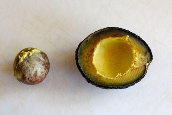 avocado-fresh-under-pit