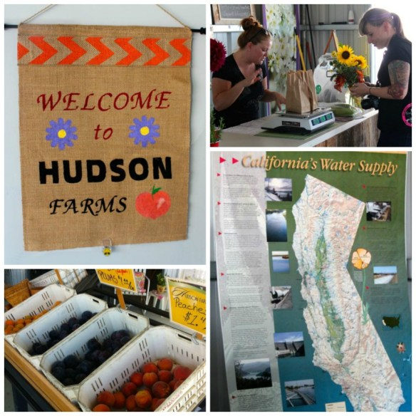 Hudson-Farms-Collage1