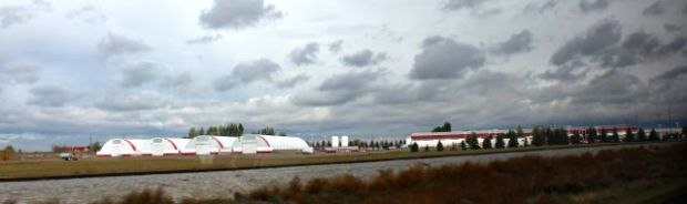 Wada Farms