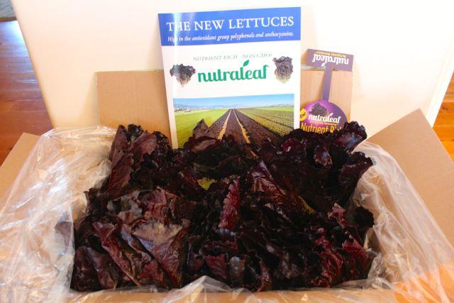 nutraleaf lettuce