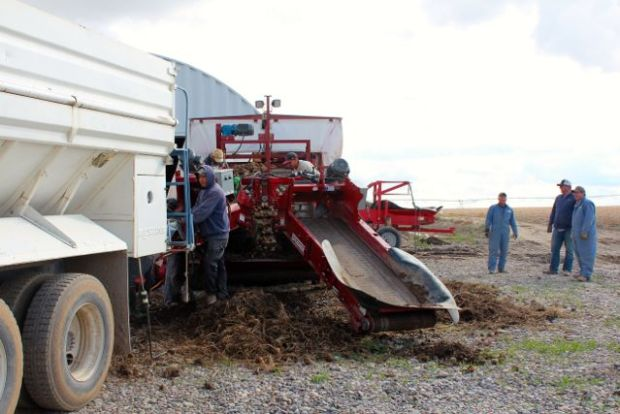 conveyer in the field