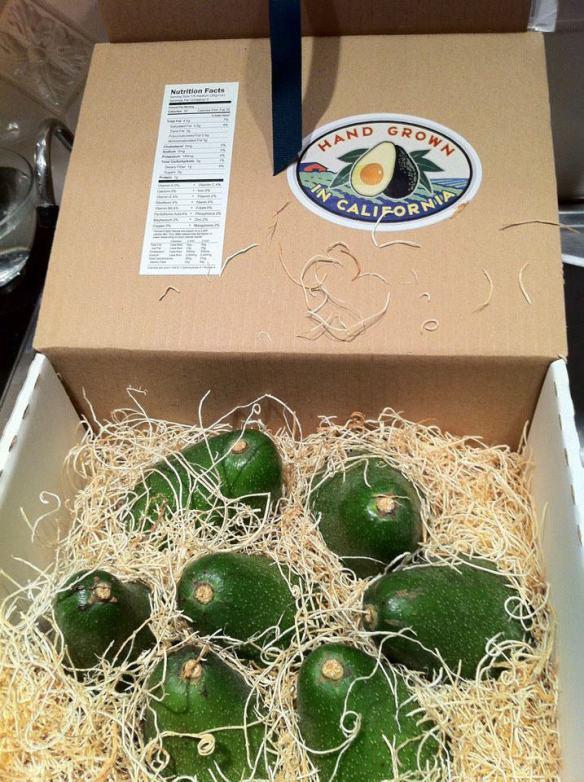 box of Bacon avocados