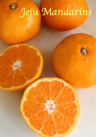 jeju mandarin oranges