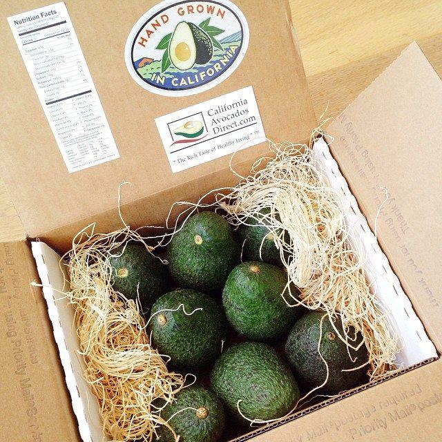 farmer dozen avocados