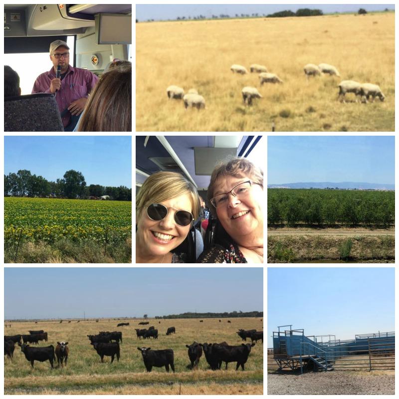 California agriculture tour at IFBC