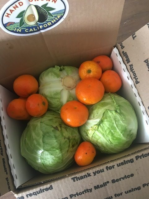 Special Box of Cabbage and Tangerines
