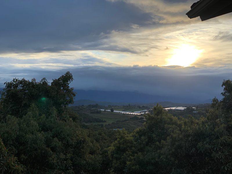Sunrise after rain
