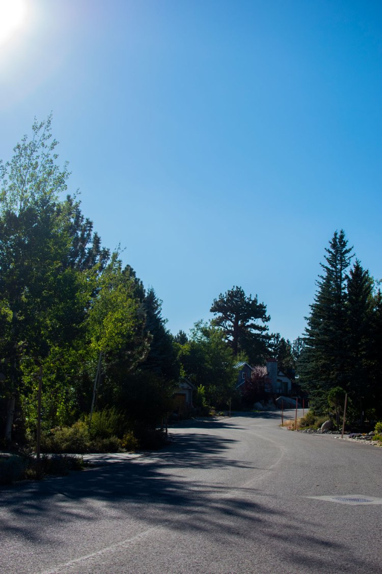 How to purchase land to build a home. How to buy a vacant lot. How to buy land to build a home. The process of buying land. Tips and tricks for buying land to build a home.