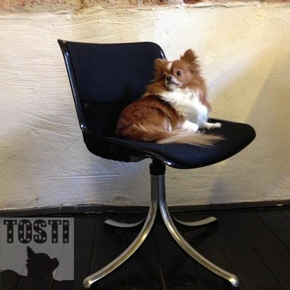 tosti_chair1