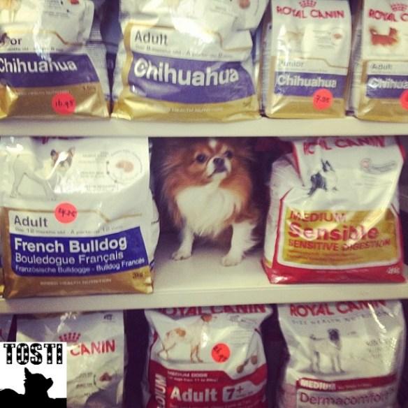 tosti_food