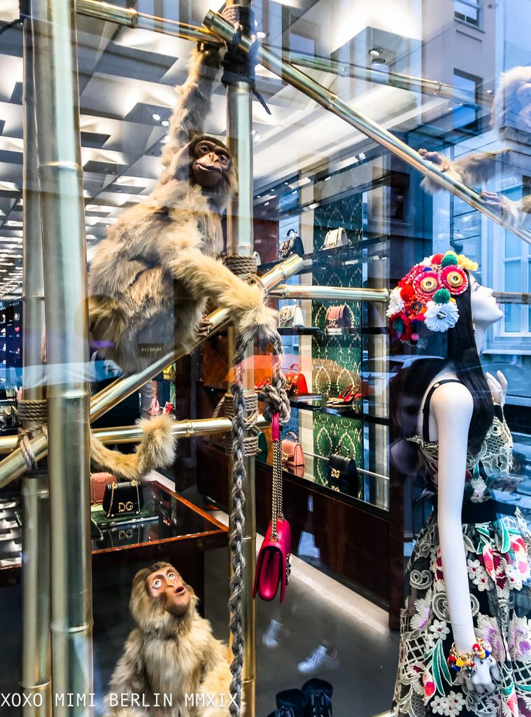 Dolce and Gabanna shopwindow