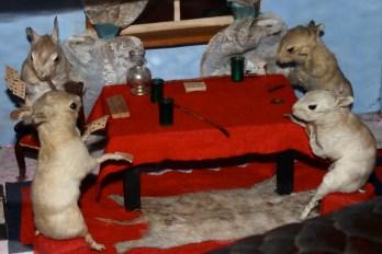 circus mice