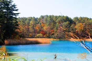 【福島景點】五色沼(附交通資訊):磐梯高原夢幻湖沼紅葉,美的不現實啊