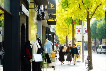 【首爾購物】江南新沙洞林蔭道 신사동가로수길:韓國時尚流行指標,網美網紅街拍熱門地點