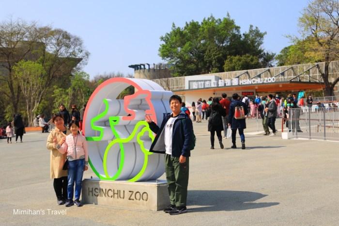 新竹景點|新竹市立動物園:明星動物、交通停車&門票攻略,小巧玲瓏的城市動物園!