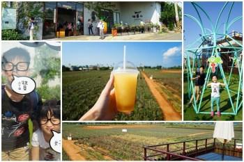 【嘉義民雄景點】旺萊山鳳梨文化園區:土鳳梨酥好好吃,探索鳳梨田,親子旅遊好地方