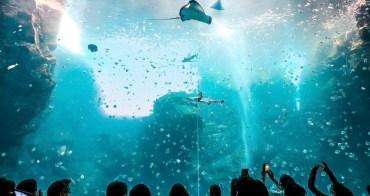 桃園景點 Xpark水族館:門票預購重點/交通建議/必拍景點/Xpark參觀心得全攻略