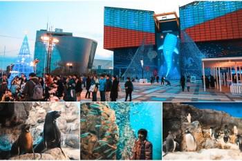 【大阪親子景點】海遊館:鯨鯊企鵝萌海豹必看明星、門票優惠&交通玩樂重點一篇搞定