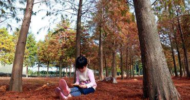 【南投景點】猴探井落羽松森林:在南投與美景的巧遇,感受浪漫到不行的北國風情~