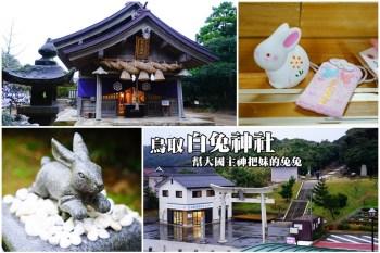 【鳥取必遊景點】鳥取白兔神社:快來祈求戀情,幫大國主神把妹的因幡白兔就是牠!