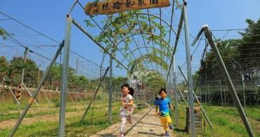 【台南景點】玉井 - 焦吧哖 x 芒芒大海小旅行:明星爸爸芒果園、天埔社區...感受更在地的旅行路線。