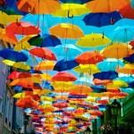 子供に傘はいつから持たせる!?グラスファイバーの傘がおすすめ