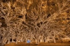 Christmas Lights Johnson City, TX 1