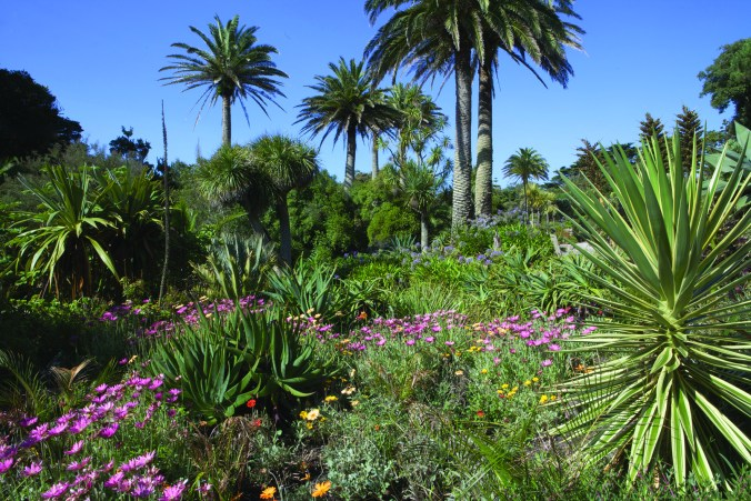 scilly_tresco_abbey-gardens_1