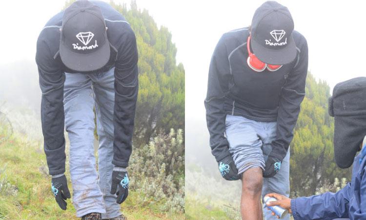 Elephant Hills Moments 4