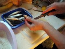 Vyčistíme rybičky / Siivomme kalat