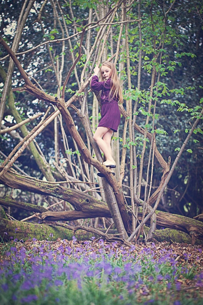 Girl climbing a tree in the bluebell wood
