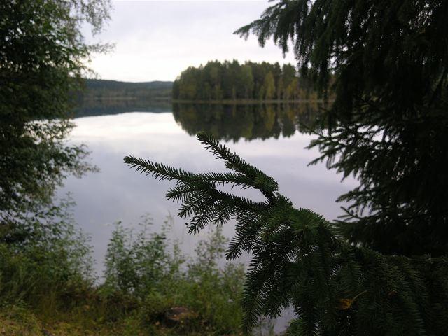 Vy- sjön_mellan