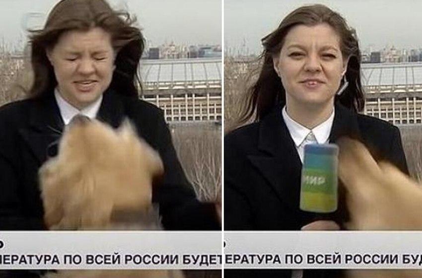 Periodista corre detrás de un perro luego de que este le robara su micrófono