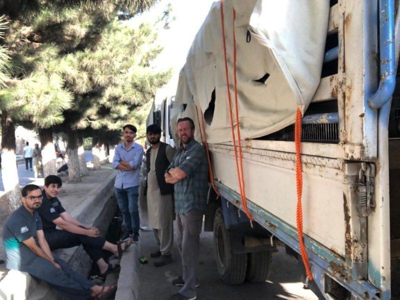200 animales que fueron rescatados de Afganistan se quedaron varados en el aeropuerto de Kabul y corren el riesgo de morir asfixiados - MMA