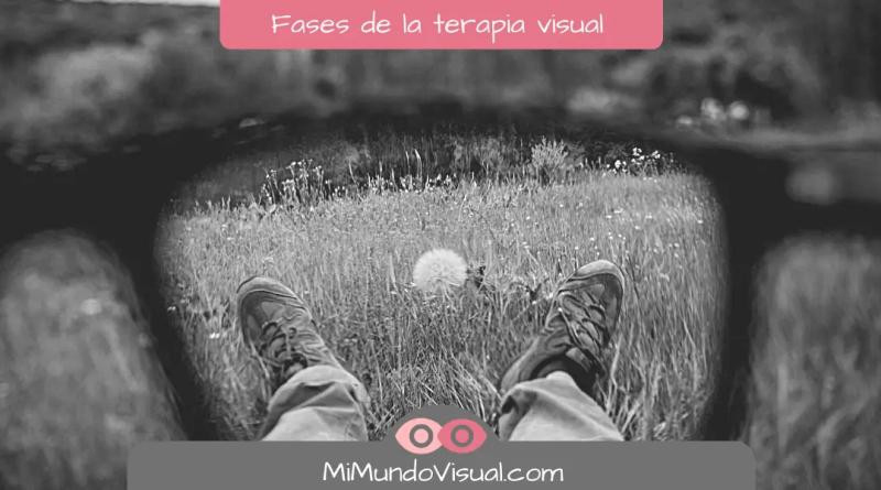 Fases de la terapia visual - mimundovisual.com