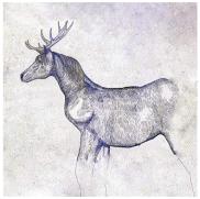 この画像には alt 属性が指定されておらず、ファイル名は 馬と鹿ジャケット.png です